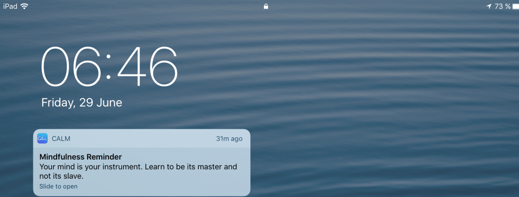 calm app review push notification